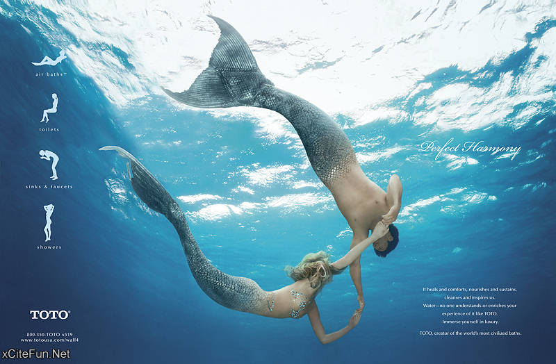 Stunning Underwater Photography by Zena Holloway