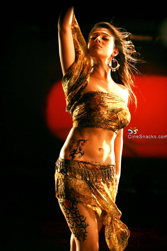 Nayantara Tamil Actress  Willowy Navel Tattooed Photo Shoot