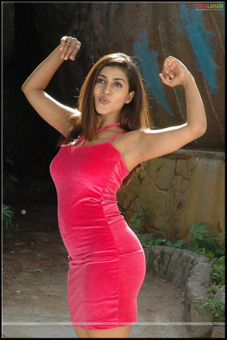 Jayaprada Hot Unseen Saree Strip Skirt Blouse Show in