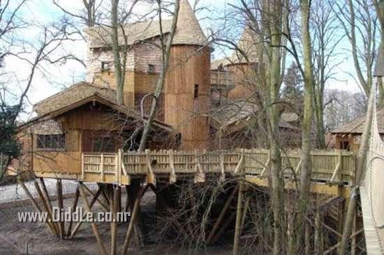 Best Tree Houses Ever Built