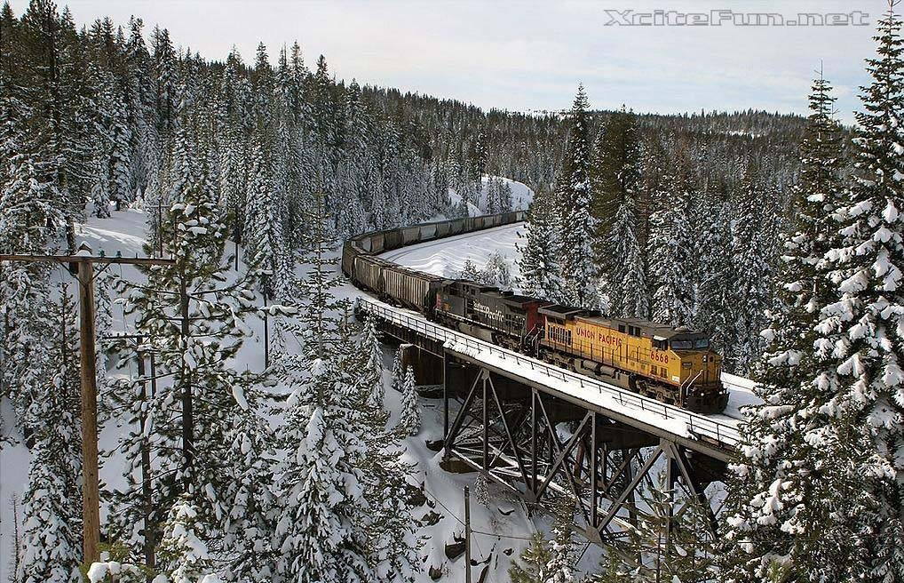 9857xcitefun train 3 - Train