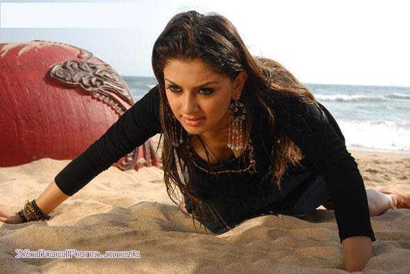 Sizzling South Indian Actress  Haniskha