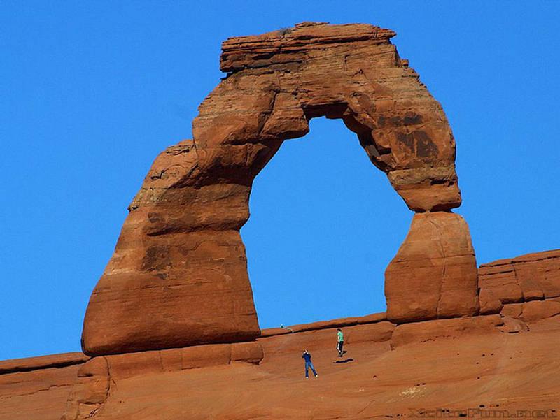 Delicate Arch Arches National Park Utah  Entrada Sandstone