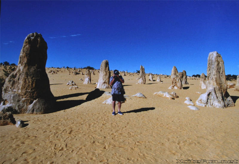 The Pinnacles Desert Nambung National Park Australia