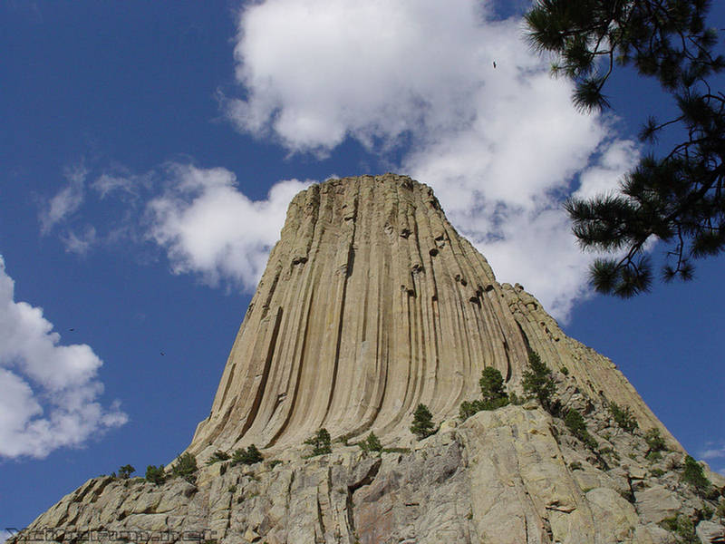 Devils Tower The Neck Of A Volcano Bear Tower Wyoming