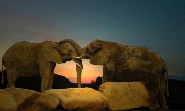 18840xcitefun love 2 - Love is life