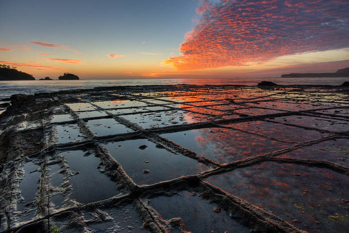 Tessellated Pavement: Geological Attraction - Tasmania : Natures