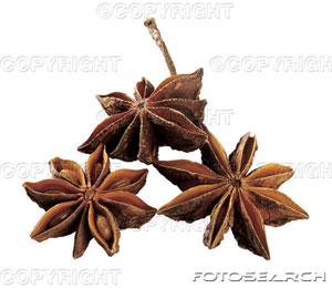 ... star anise granita white grapefruit and star grapefruit star anise