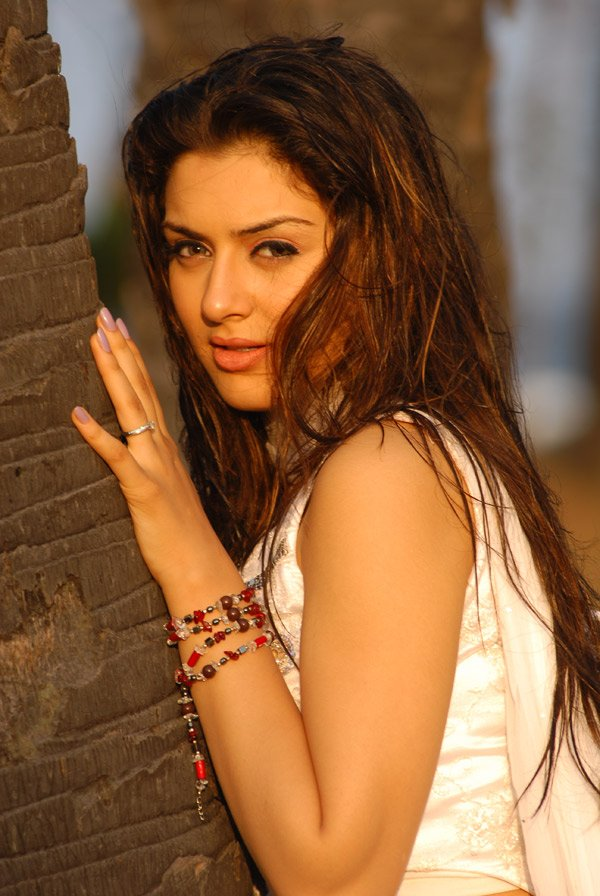 Hansika Motwani  Cute and Beautiful Actress Pictures