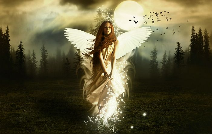 http://img.xcitefun.net/users/2009/07/100848,xcitefun-photo-manipulation-rise-on-an-angel-v3.jpg