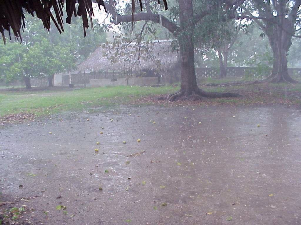 101336,xcitefun rainingo RAIN A Gift of GOD