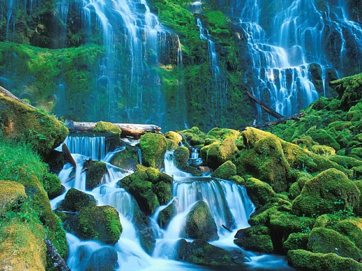nature around xcitefun