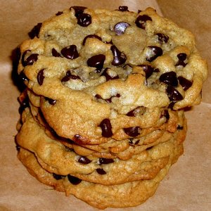 http://img.xcitefun.net/users/2009/07/94418,xcitefun-chocolate-chip.jpeg