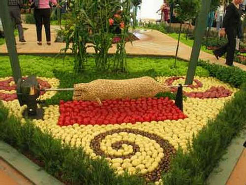 world Beautiful Fruits and Vegetables Art - XciteFun.net