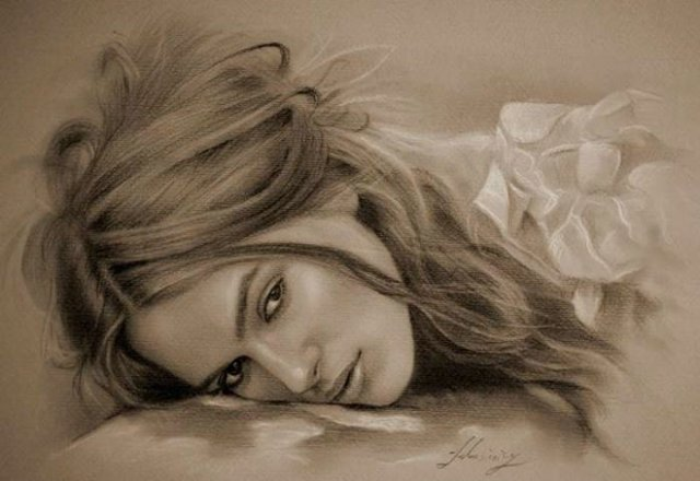 Superb Drawing  Celebs