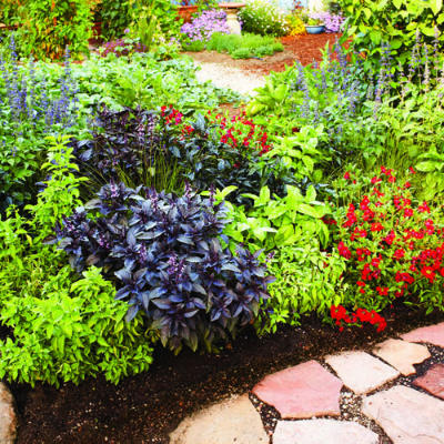 3 plans for colorful easy care spring borders for Low maintenance plants for garden borders