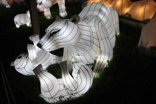 مهرجان المصابيح بالصين تعالوا نتفرج سوا