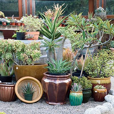 Gardening Decorating Ideas erikhanseninfo