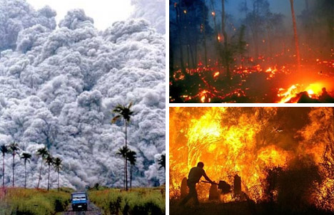 most devastating environmental disaster Top 10 of natural and anthropogenic environmental disasters this environmental disaster 'the and most trees uprooted: f4: 251-330: devastating.