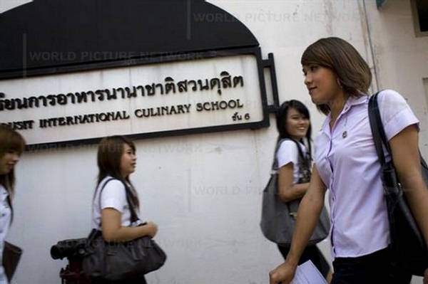 The University Of Ladyboy
