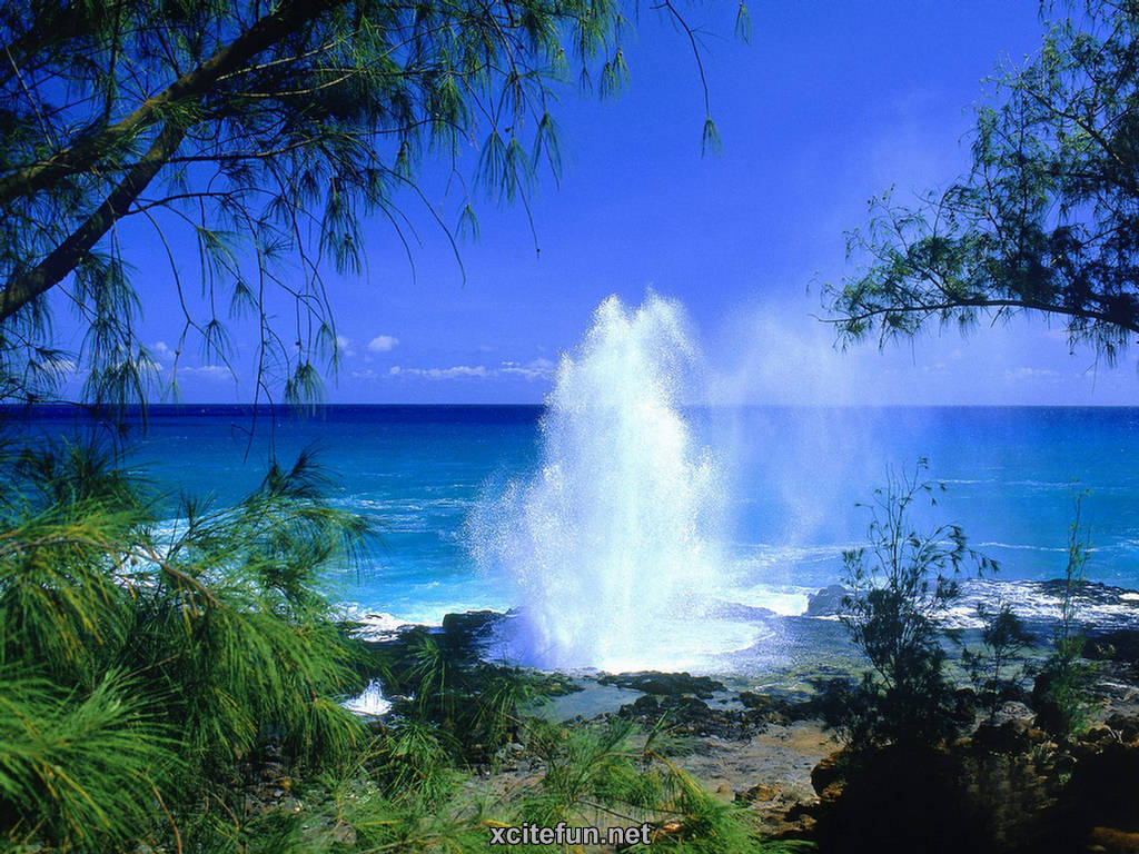 Image Result For Hawaii Vacations Travel Guide Information Hawaii