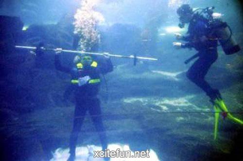 Underwater Olympic Games  Artistic Efforts