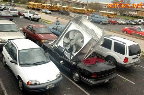 The Bizarre Car Accident Xcitefun Net