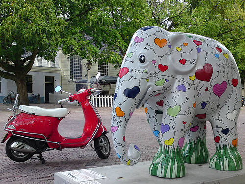 Baby Elephant  The Painted Parade