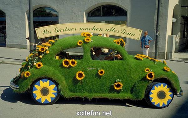 Volkswagen Beetle - The Crazy Classic - XciteFun.net