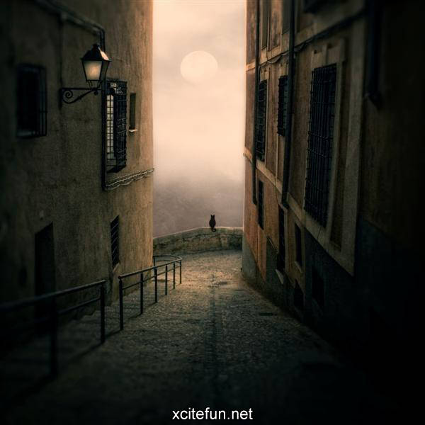 My Surreal Dreams Stunning Imagery Xcitefun Net