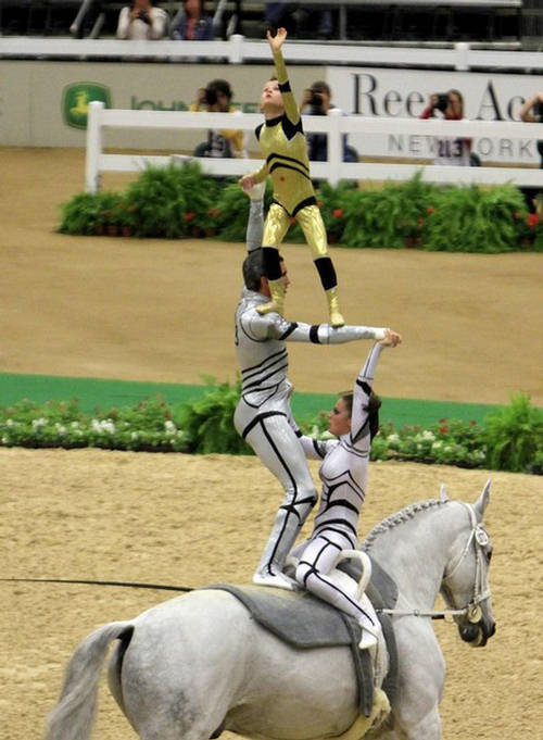 Equestrian Vaulting World Equestrian Games 2010