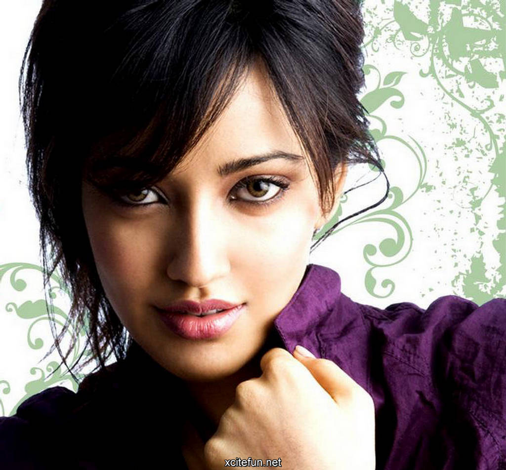 Neha Sharma Photos Wallpaper Actress Beauty