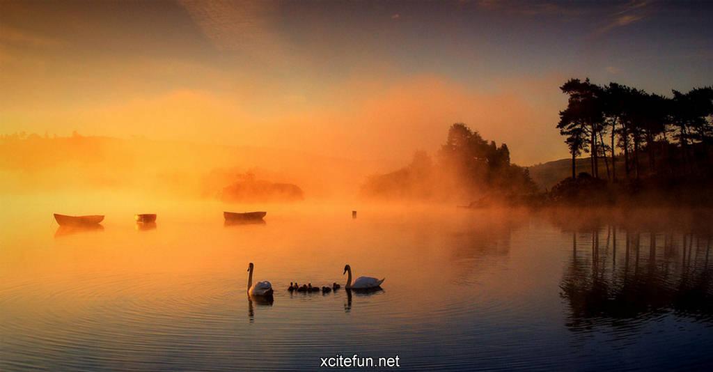 Http Forum Xcitefun Net Stunning Photography Amazing Nature Wallpapers T54165 Html