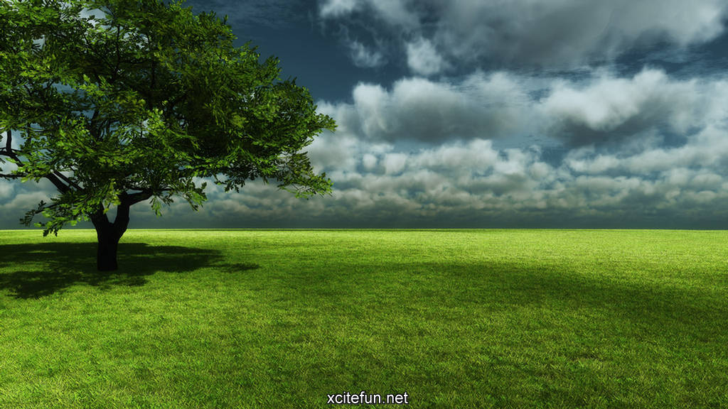 3d wallpapers for desktop nature. images 3d wallpapers for
