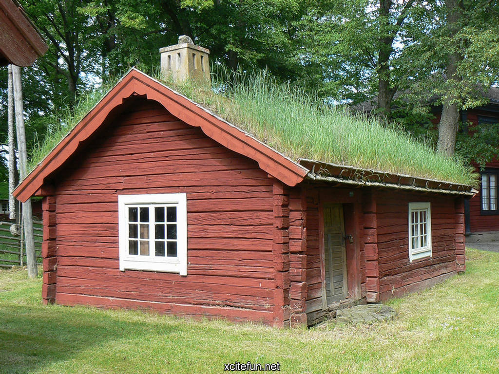 Green Grass Houses Beautiful Green Houses Xcitefun Net