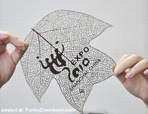The completed leaf.
