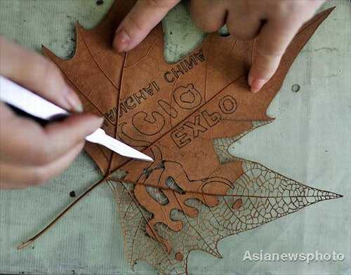 Carving a leaf using a scalpel to remove the outer layer.