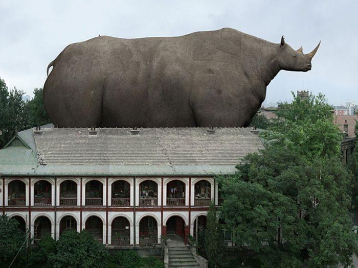 Giant Animals - Giant Photography - XciteFun.net