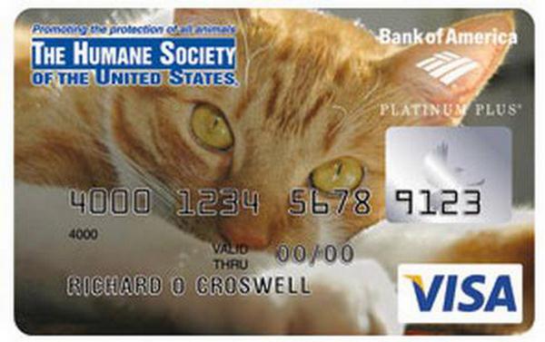 credit cards designs. Best Credit Card Designs