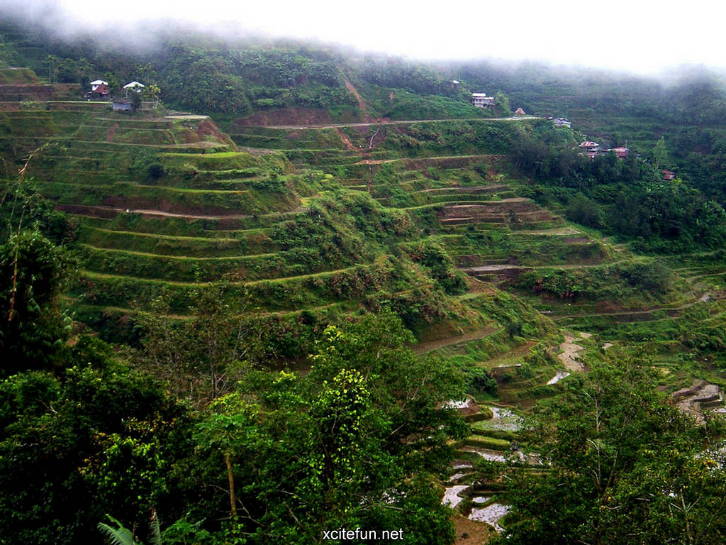 Banaue rice terraces philippines cultural treasure for What are terraces
