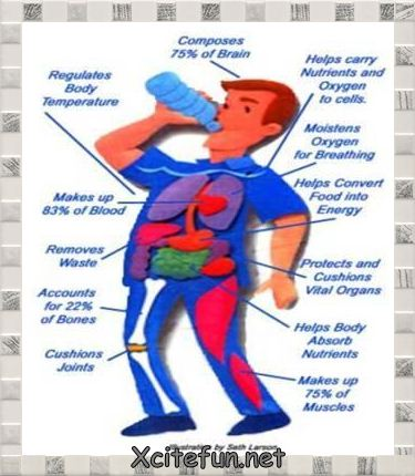 Fluid Intake and Output Charts http://forum.xcitefun.net/world-water-day-benefits-of-water-t59632.html