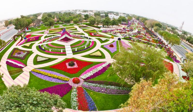 The Garden CityAL AIN PARADISE