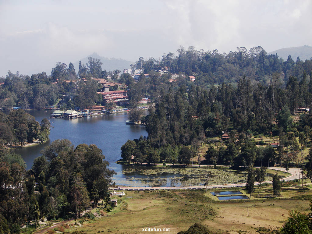 Kodaikanal India  city photos gallery : Kodaikanal Lake India Detail & Images : Travel Tourism