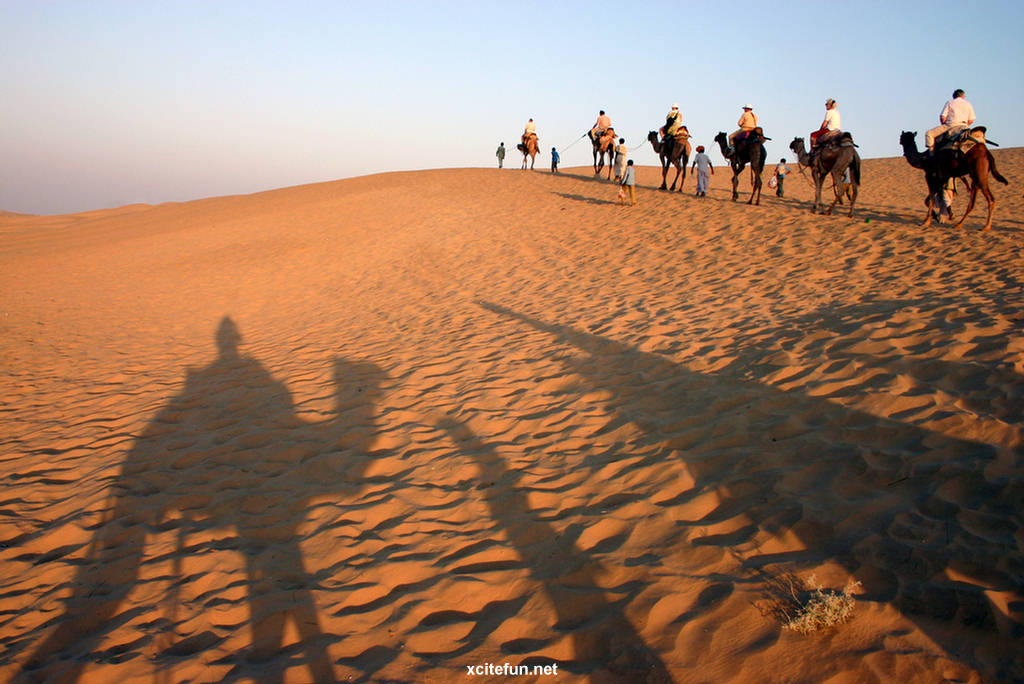 Thar Desert - Desert Between Pakistan & India - XciteFun.net