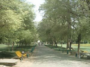 Jinnah Park Lahore dating