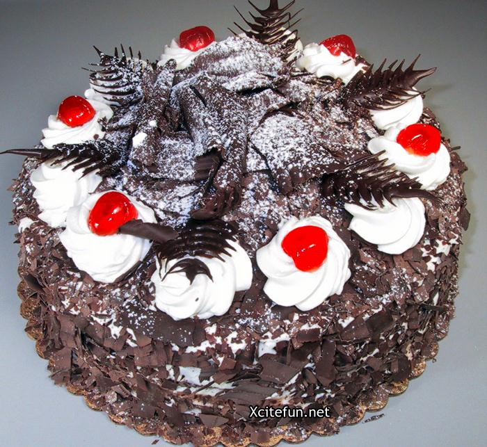 Cake Black Forest Birthday : Black Forest Birthday Cake Recipe - XciteFun.net