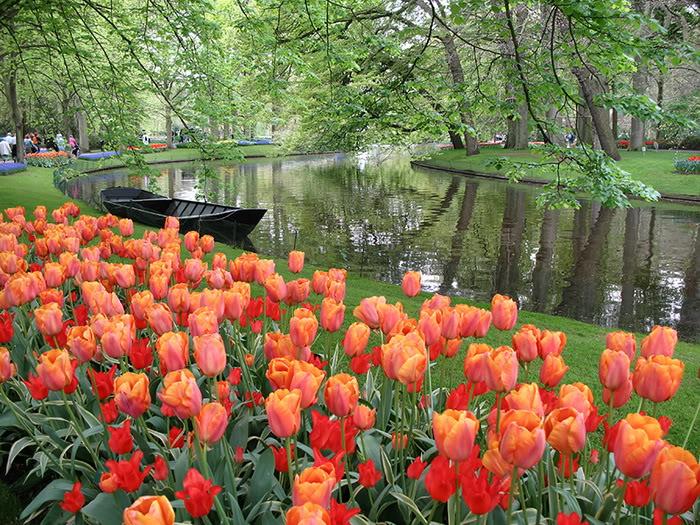 263218,xcitefun anh dep vuon hoa p1 02 Gardens with Beautiful Flowers