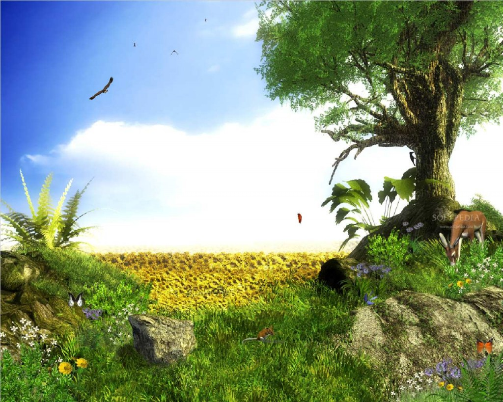 Wonderful 3d nature new beautiful 3d wallpapers for 3d nature wallpaper for home