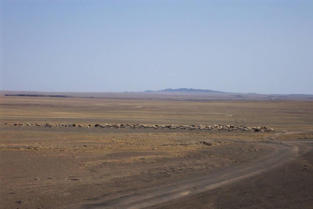 264683xcitefun gobi desert 5 - Gobi Desert Images - Asia's Large Desert Region