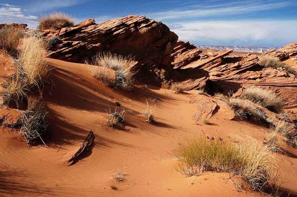 264684xcitefun gobi desert 4 - Gobi Desert Images - Asia's Large Desert Region